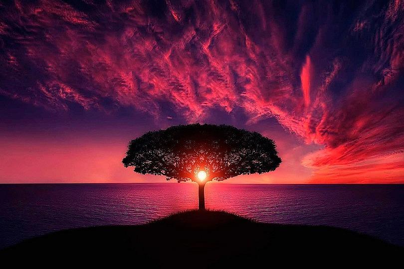 Como corregir el horizonte en tus fotografías de paisaje